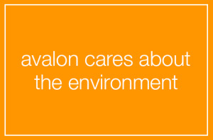 ZEN - Avalon Cares About The Environment